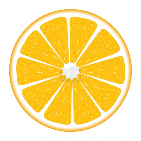 Illustration for Orange segment isolated on a white background. Vector illustration. - Royalty Free Image