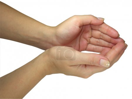 Human lady hands holding your object