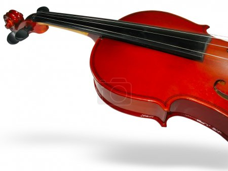closeup violino classico con ombra