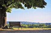 paysage de rivière ville Belgrade