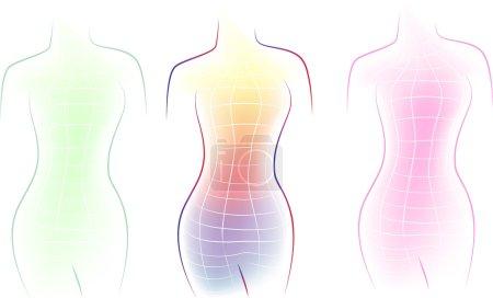 Illustration pour Contour d'un corps féminin - image libre de droit