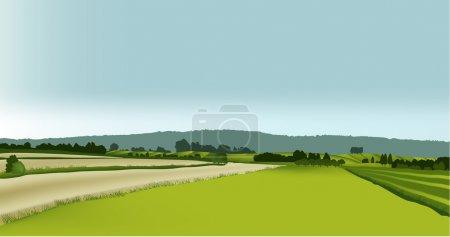 Illustration for Vector green landscape. - Royalty Free Image