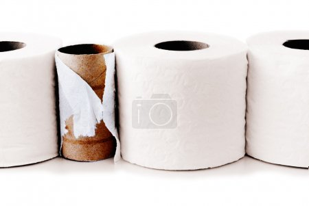 Toilet paper rolls in a row with a used up one amo...