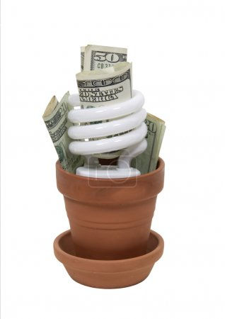 Growing Green cost effectively