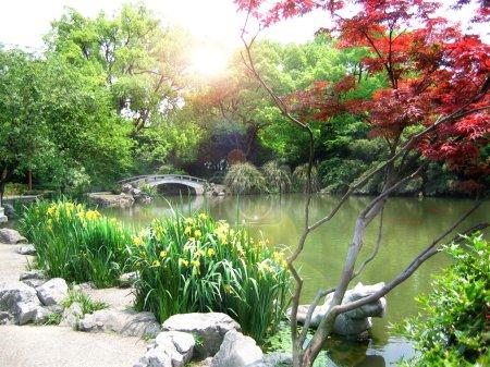 Nature park scenery, Hangzhou