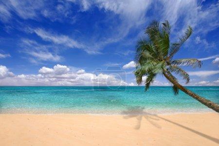 Teal Waters of the Hawaiian Islands