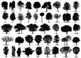 Black tree silhouettes