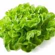 Close up of fresh butterhead lettuce isolated on w...