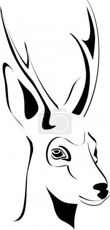 Portrait of roe shed cast horns vector a