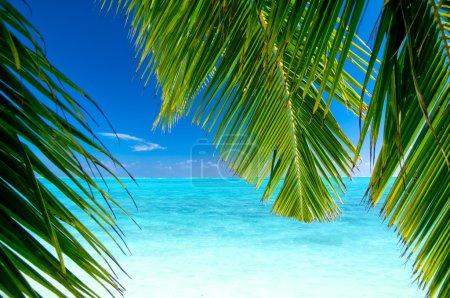 View to a tropical beach