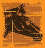 Grunge vintage horse head