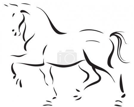 Photo for Line art of a gorgeous stallion - Royalty Free Image