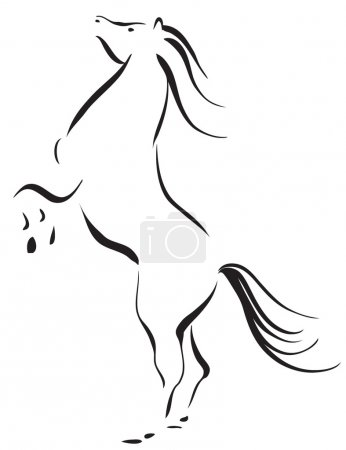 Photo for Vector illustration of a wild horse - Royalty Free Image