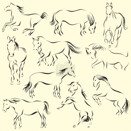 Photo for Line art style illustration of a ten beautiful horses - Royalty Free Image