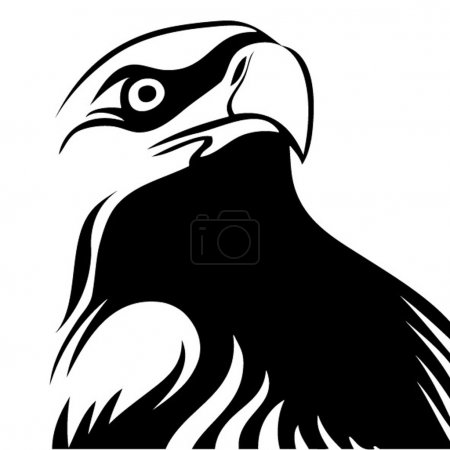 Photo for Beautiful American eagle - Royalty Free Image