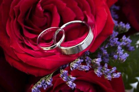 bandes de mariage nichés à roses