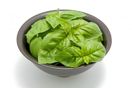 Photo for Black bowl with fresh basil leaves over white background - Royalty Free Image