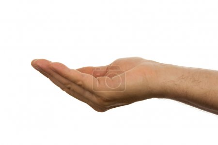 Photo for Open empty male hand over white background - Royalty Free Image