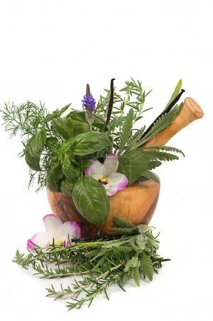 Photo pour Herbes relaxantes pour l'aromathérapie - image libre de droit