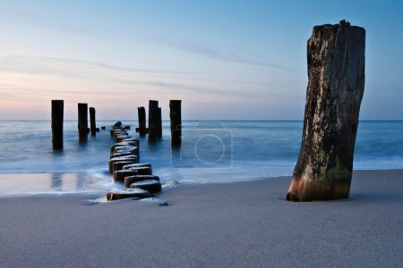Photo for Old groyne on the shore of the Baltic Sea. - Royalty Free Image