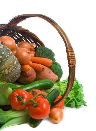 Basket of Market Vegetables