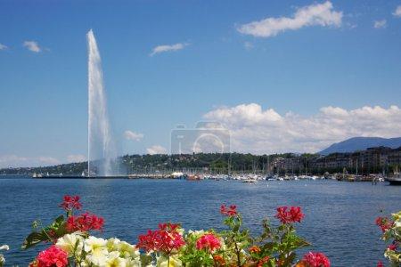 Photo pour Célèbre fontaine Jet d'eau Genève avec des fleurs à l'avant - image libre de droit