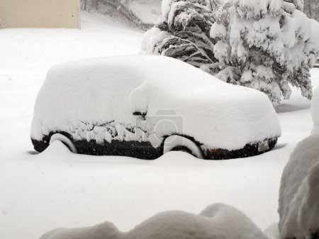 Blizzard of 2010 - snow covered vehicle