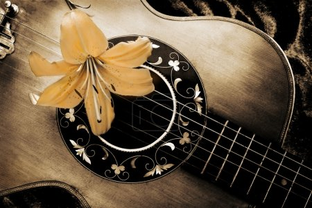 Vintage guitar and lily