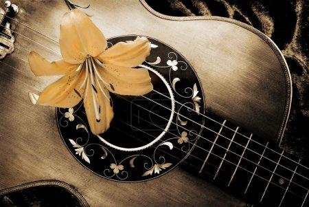 Photo pour Composition de la vieille guitare et fleur de lys . - image libre de droit