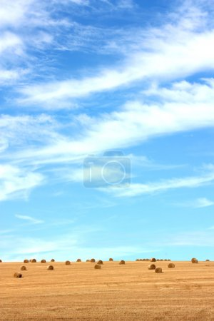 Harvested crops and clear skies