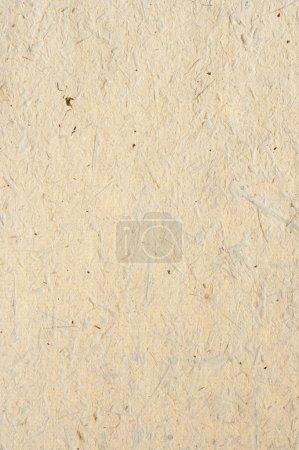 Photo pour Détail de la surface rugueuse du papier à la main avec reste de plantes - produits naturels - image libre de droit