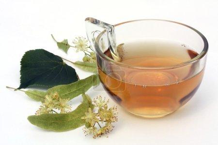 Lime blossom - tea