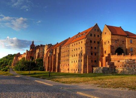 Polish castle