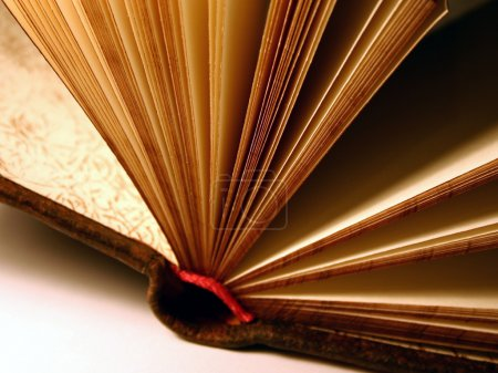 Book, blank pages, close-up...