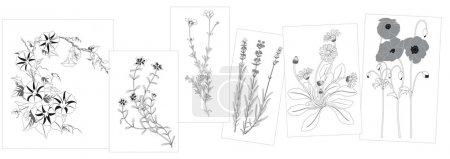 Illustration for Set of wild flowers in black - elements for design - illustration - Royalty Free Image