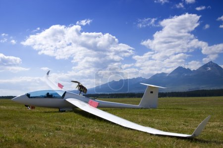 Grounded glider