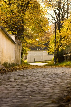 Cobbled street in autumn