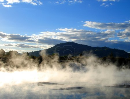 Geothermal activity in Kuirau Park, NZ
