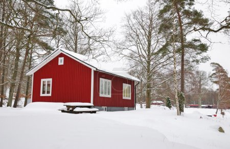 Winter Swedish house