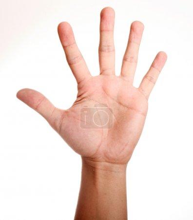 Photo pour Main ouverte sur fond blanc. Image isolée - image libre de droit