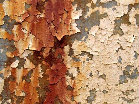 Photo pour Vieille peinture rouillée peeling - image libre de droit