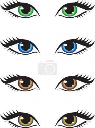 Illustration pour Quatre paires d'yeux de différentes couleurs, vert, bleu, brun et gris. Illustration vectorielle . - image libre de droit