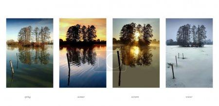 Photo pour Collection quatre saisons - Printemps, été, automne, hiver - image libre de droit