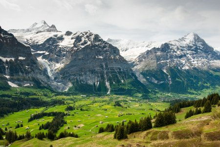 Grindelwal valley in spring