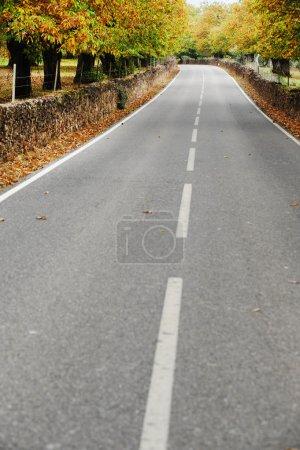 Photo pour Une route de campagne calme et paisible en automne - image libre de droit