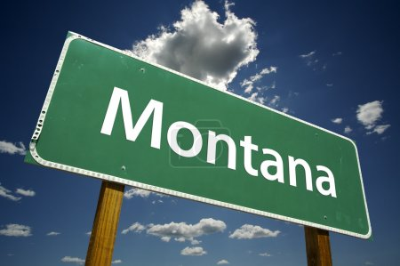 Montana Green Road Sign