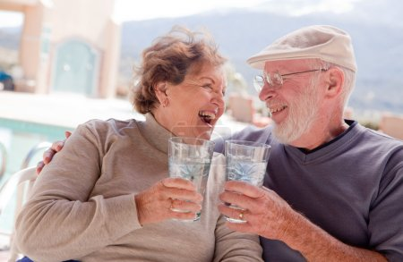 Happy Senior Adult Couple Enjoying Drink