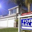 Blue Foreclosure For Sale Real Estate Sign in Fron...
