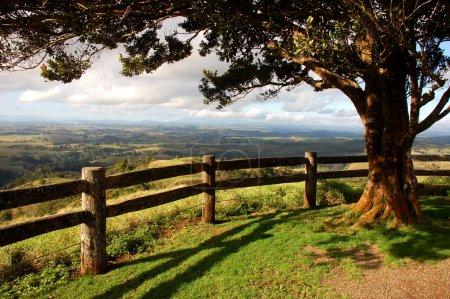 Photo pour Campagne de l'Australie depuis un belvédère avec arbre et clôture - image libre de droit
