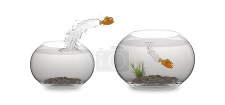 Cartoon leaping fish